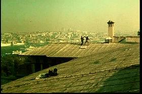 Wong protiv Cüneyta na krovovima Istanbula. Veličanstveno