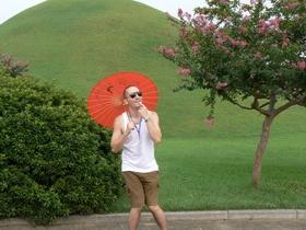 Hrvatska gejša