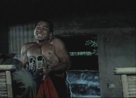 Nabildani kung fu majstor