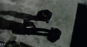 Trojac u noir elementu