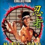 'Mafia vs. Ninja' (1984.)