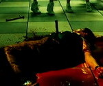 'Death Bell 2: Bloody Camp' (2010)
